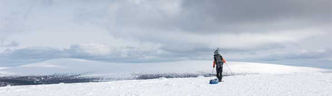 Фотоальбом «Перевал Дятлова»
